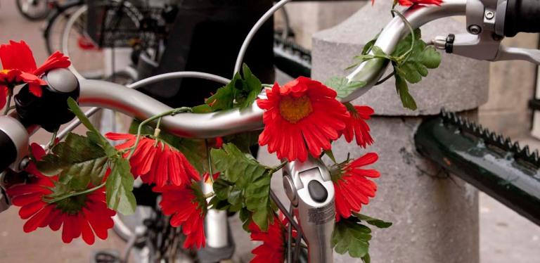 flowers on bike in Amsterdam